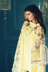 Pakistani Party Dresses by Teena