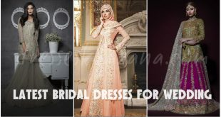 Bridal Dresses 2017 - Latest Pakistani Bridal Wear Designs for Wedding
