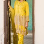 EMBROIDERED NET SHIRT WITH SLIP & TROUSER