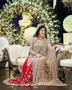 Latest Pakistani Bridal Dresses 2017 (18)