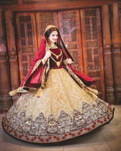 Latest Pakistani Bridal Dresses 2017 (27)
